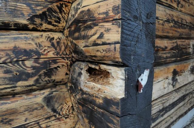 Kæmpestor Tømmerhus kan få fuktproblemer | Huseierne EK65